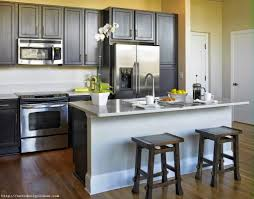Kitchen Design Video by Small Condo Kitchen Design Pictures On Fantastic Home Decor