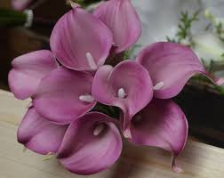 purple calla lilies purple calla lilies etsy