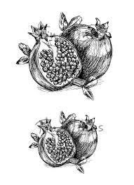 best 25 pomegranate tattoo ideas on pinterest fruit tattoo