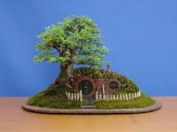 bonsai by chris guise hum ideas