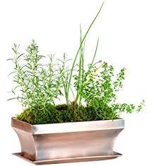 amazon com h potter window box rectangular succulent planter