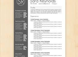 Visual Resume Templates Free Gorgeous Professional Resume Writing Services Mumbai Tags