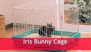 Rabbit Hutches For Indoors Indoor Bunny Cages Review Iris Bunny Cage Rabbit Hutches