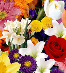 flowers canada canada floral canada flowers delivery ftd flowers in canada send