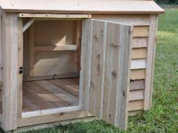 Dog House Interior How Do I Clean My Dog House And Cats House