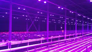 led lighting gorgeous diy led grow light driver diy led grow