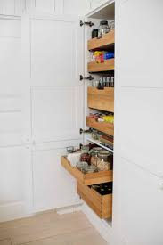 Great Kitchen Storage Ideas 254 Best Kitchen Storage Ideas Images On Pinterest Home Kitchen