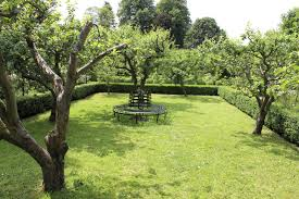 Backyard Trees Landscaping Ideas 32 Brilliant Backyard Tree Ideas