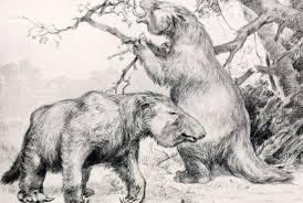10 big facts about giant ground sloths mental floss