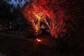 celebrate halloween or support the denver broncos with orange lens