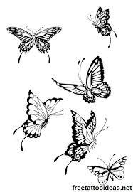 91 best drugeliai images on butterflies flies