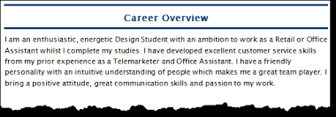 Professional Summary On A Resume How To Write A Cv Professional Summary