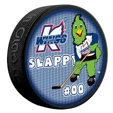 futuristic puck hockey services