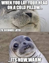 Head Cold Meme - short satisfaction vs truth meme imgflip