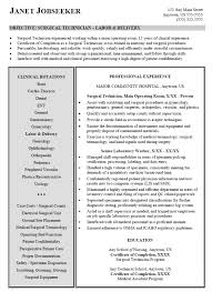 technical resume examples technical manager resume example