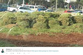 Grass Memes - trending this thursday obama kidero grass memes entertainment blog