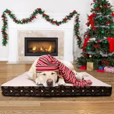 Dog Armoire Furniture Pet Furniture You U0027ll Love Wayfair