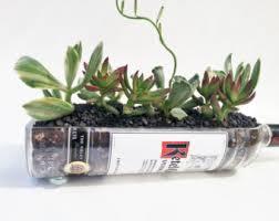 glass succulent planter wine bottle planter garden wine