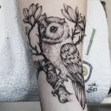 50 of the most beautiful owl designs and their meaning for