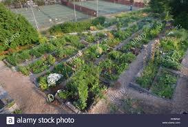 Solstice Park West Seattle by Vegetable Garden Aerial View Stock Photos U0026 Vegetable Garden