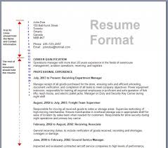 format of an resume resume format and resume makerresume new