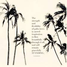 the meaning the palm tree tattoos the