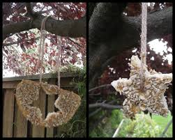edible ornaments for wildlife family crafts
