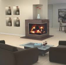 fireplace cool gas fireplace vented decorating ideas top in home