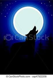wolf howling at the moon in forest background wolf