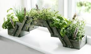 Herb Window Box Indoor Shabby Chic Gardening Essentials Lights Planters U0026 Accessories