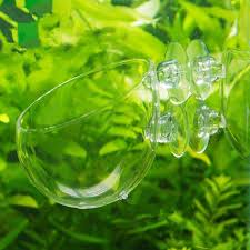 Plants For Aquascaping Aquatic Plant Crystal Glass Cup Pot For Aquarium Aquascaping Fish