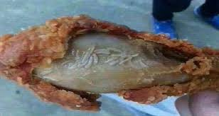 live worms found in kfc chicken wings in china nifymag