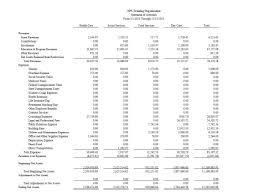 Sample Financial Report Non Profit Organizations Financial Statements Sample Cehaer