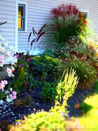 garden design garden design with portfolio index neil nathan