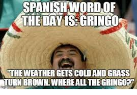 Spanish Word Of The Day Meme - spanishword of the dayisgringo the weather gets cold and grass