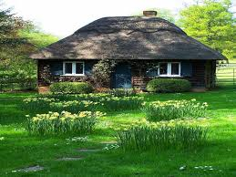 Small Cute Houses by Houses Cute Little Cottage Small House Grassy Fields Grass Green