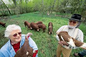 s free range organic and heritage turkeys