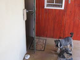 Patio Door Cat Flap by Cat Flap Or Dog Door Alternative Locklatch Usa