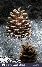 table decorations with pine cones a still life of a christmas table decoration a large pine cone