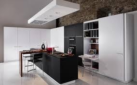 kitchen looks ideas modern kitchen looks gallery design ideas 7250