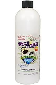 How Can I Kill Bed Bugs Amazon Com Bed Bug Spray And Repellent Cedar Bug Free Bed Bug