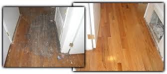 hardwood floor refinishing any 2 average size bedrooms living