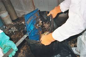 Bathroom Smells Like Sewage Plumbing Of Age What Every First Time Homeowner Should Know About