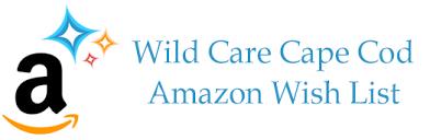 www wish list wish list care