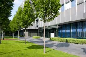 commercial tree services danbury ct