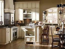 cabinet mesmerizing kitchen cabinets wholesale ideas kitchen