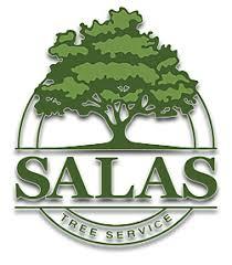salas tree service tree removal tree trimming in oklahoma city