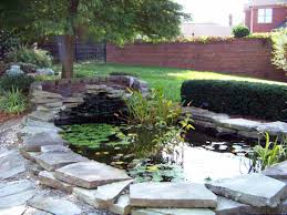 pond string algae control solutions lexington kentucky ky h2o