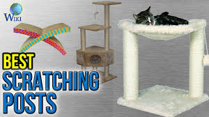 10 best scratching posts 2017 youtube