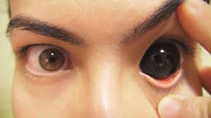 vampire halloween contacts how to insert and remove black sclera contact lenses fxeyes